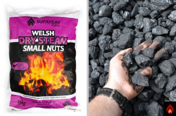 Welsh Dry Steam Small Nuts - 1/2 tonne